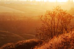 Autumn fog and morning sun in a landscape Royalty Free Stock Image
