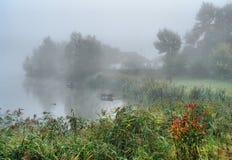 Autumn fog over the lake Stock Photography