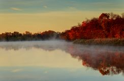 Fog over river in forest in the autumn. Autumn fog river yellow leaves Fog over river in forest in the autumn royalty free stock photography