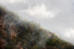 Autumn fog Stock Images