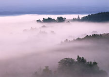 Autumn foggy day in the mountains Royalty Free Stock Images