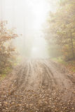 Autumn foggy day - Poland. Royalty Free Stock Photography