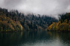 Autumn foggy lake shore under clouds in the dusk Stock Photography