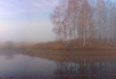 Autumn foggy morning at the pond Royalty Free Stock Photography