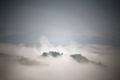 Autumn foggy mountain scene. Fall rain and mist Stock Photography