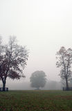 Autumn foggy scene Royalty Free Stock Photos