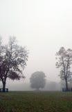Autumn foggy scene Royalty Free Stock Photos
