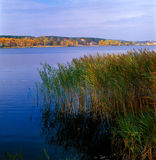 Autumn foliage. Autumn on lake. Kyiv region, Ukraine Royalty Free Stock Photo