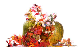 Autumn Foliage. Two ripening pumpkins along with some artificial fall foliage, isolated against a white background Royalty Free Stock Photos