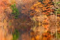 Autumn foliage. Golden autumn foliage around New Jersey lake in Appalachian mountains Stock Image