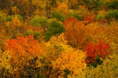 Autumn Foliage In The Adirondack-Berge des Staat New York Lizenzfreies Stockbild
