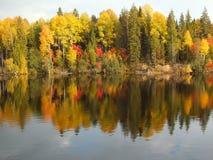 Autumn foliage along waterfront