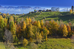 Autumn Foliage And Deep Blue Sky In The Mountains Stock Photos