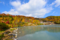 Autumn foliage in Aomori, Japan Stock Photography