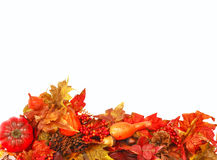 Autumn foliage background. Autumn background with colorful foliage along the bottom Royalty Free Stock Photography