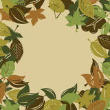 Autumn foliage background Stock Photo