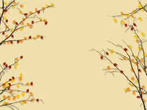 Autumn foliage background Royalty Free Stock Images