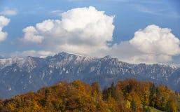 Autumn foliage background Stock Images