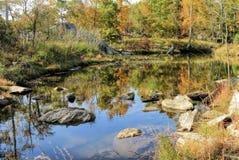 Autumn Foliage By Beautiful Pond coloré Photos stock