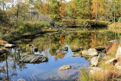 Autumn Foliage By Beautiful Pond colorido Fotos de archivo