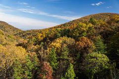 Autumn foliage on the Blue Ridge Mountians. Colorful autumn foliage along the Blue Ridge Mountains located in Virginia, USA Stock Photo
