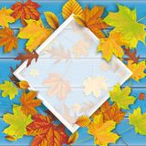 Blue Wood Autumn Foliage Frame. Autumn foliage on the blue wooden background and white frame Royalty Free Stock Photos
