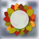 Autumn foliage blurred background. Vector illustration. eps 10 Royalty Free Stock Photos