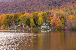 Autumn foliage and cabin in Elmore state park, Vermont Royalty Free Stock Images