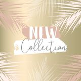 Elegant set of chic trendy abstract marble gold luxury textures. Elegant set of chic trendy coral marble gold luxury textures. Beautiful backgrounds for stock illustration