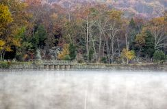 Autumn Foliage coloré le matin brumeux Images libres de droits