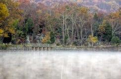 Autumn Foliage colorido en mañana de niebla Imágenes de archivo libres de regalías