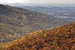 Autumn Foliage colorido en Rolling Hills de Shenandoah Imagen de archivo libre de regalías
