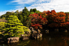 Autumn foliage colors in Himeji Stock Images