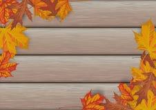 Autumn Foliage de madeira Imagem de Stock Royalty Free