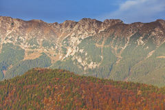 Autumn foliage and deep blue sky in the mountains Royalty Free Stock Images
