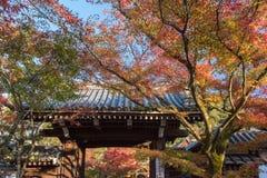 Autumn foliage at Eikando Temple Stock Images