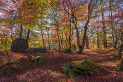 Autumn foliage at Eikando Temple Stock Photography