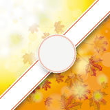 Autumn Foliage Fall Bevel Banner Emblem Royalty Free Stock Photo