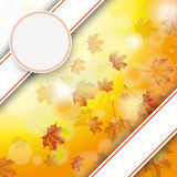 Autumn Foliage Fall Bevel Double Banner Emblem Royalty Free Stock Photography