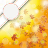 Autumn Foliage Fall Bevel Emblem Royalty Free Stock Image