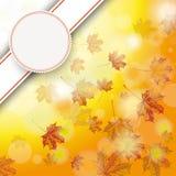 Autumn Foliage Fall Bevel Emblem Royalty Free Stock Image