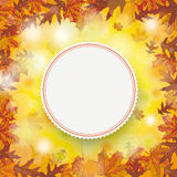 Autumn Foliage Fall Emblem Centre extérieur Photographie stock