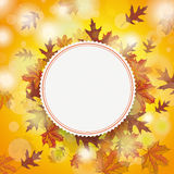 Autumn Foliage Fall Emblem Centre Stock Photo