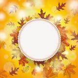 Autumn Foliage Fall Emblem Centre Stock Photo
