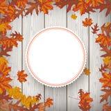 Autumn Foliage Fall Emblem Wood Photo libre de droits