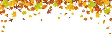 Autumn Foliage Fall Header Images libres de droits