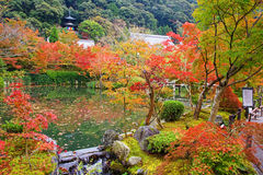 Autumn foliage garden and pagoda at Eikando, Kyoto Royalty Free Stock Images