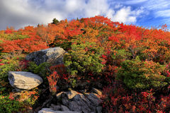 Autumn foliage on Grandfather Mountain. View of autumn foliage from the Tanawha Trail on Grandfather Mountain, located near the Blue Ridge Parkway in North Royalty Free Stock Image