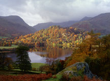 Autumn foliage, Hall bank, Lake district Royalty Free Stock Photo
