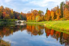 Autumn Foliage In Pavlovsky Park, Pavlovsk, St. Petersburg, Russia Royalty Free Stock Image